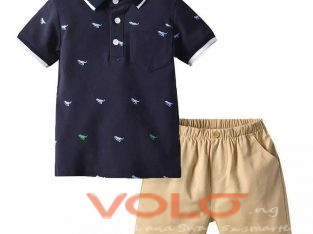 2pcs Dinosaur print boys set